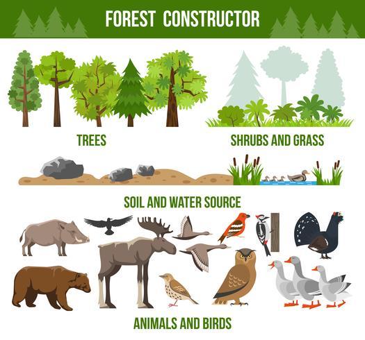 Affiche du constructeur forestier vecteur