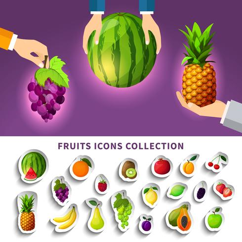 Collection d'icônes de fruits vecteur