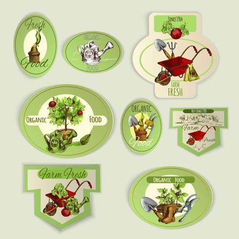 Emblèmes de jardinage de légumes vecteur
