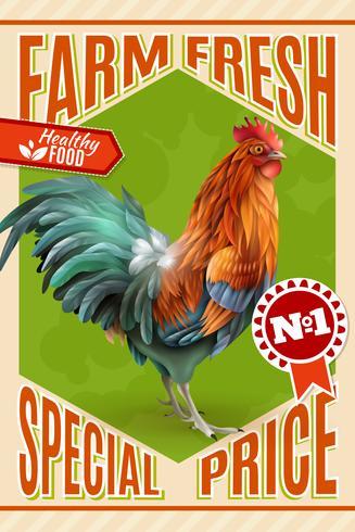 Affiche vintage de vente de ferme de coq vecteur