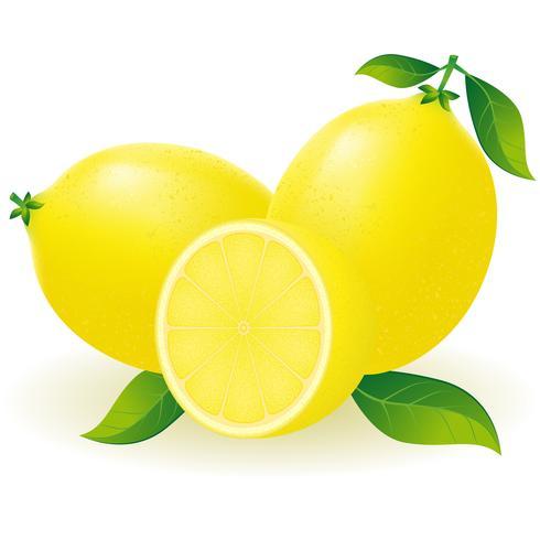 illustration vectorielle de citron vecteur