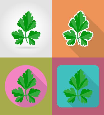 icônes plat légume persil avec l'illustration vectorielle ombre vecteur