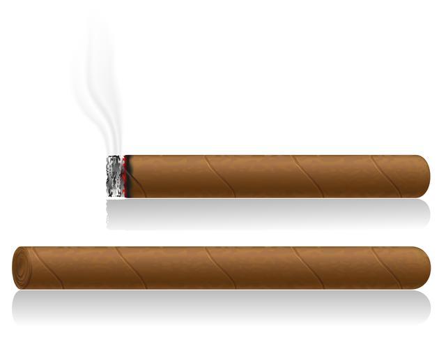 illustration vectorielle de cigares vecteur