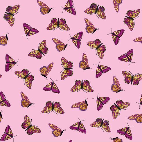 Modèle sans couture de papillon. Fond de la faune de vacances d'été. vecteur