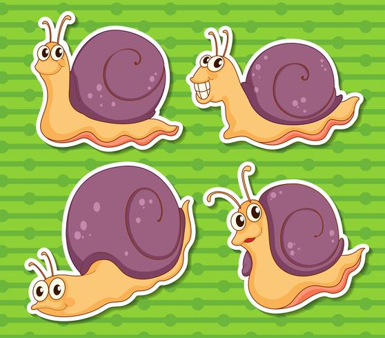 Escargot vecteur