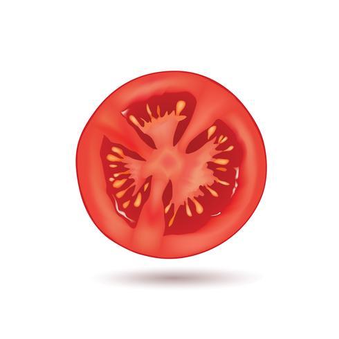 Tomate isolée. Logo de légumes. Signe de produit naturel vecteur