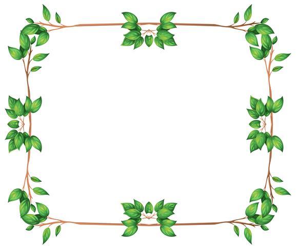 Un cadre vide avec des bordures de feuilles vertes vecteur