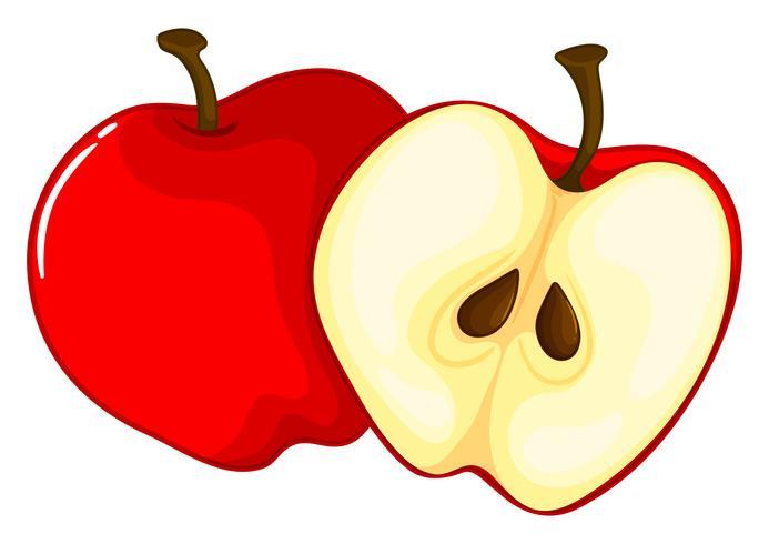 Pomme rouge coupée en deux vecteur