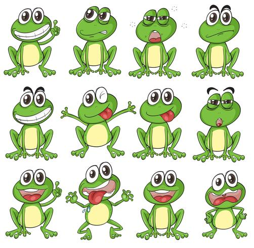 Différents visages d'une grenouille vecteur
