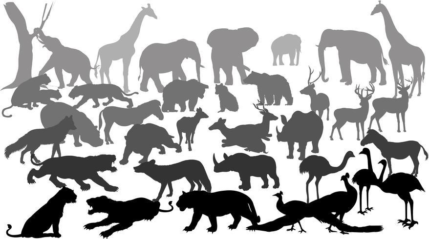 silhouette d'animaux sauvages vecteur