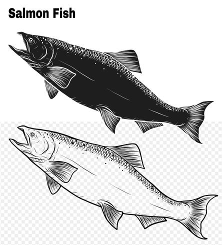 Art du saumon très détaillé dans un style d'art en ligne vecteur
