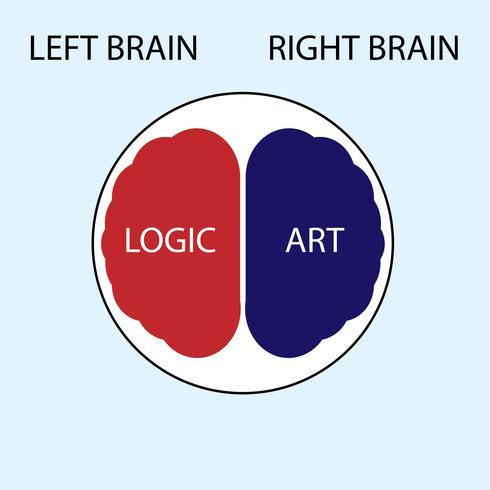 vecteur de concept de cerveau gauche et droit