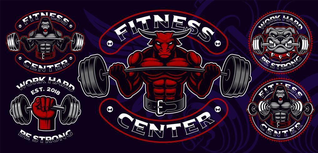 Ensemble de badges colorés, logos, gravures de chemise pour le thème de la gym. vecteur