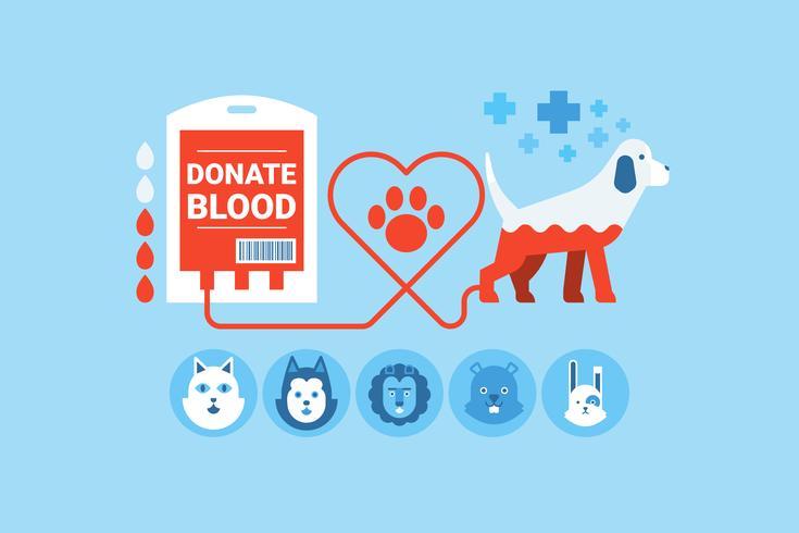 Concept de don de sang de chien vecteur