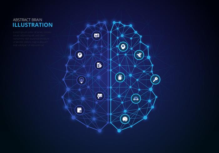 Infographie des hémisphères du cerveau humain vecteur