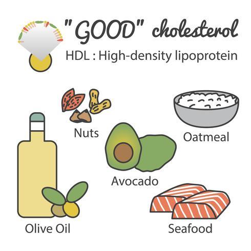 HDL dans les aliments vecteur