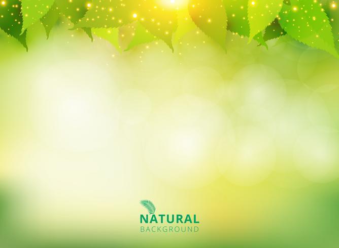 Fond vert naturel printemps été avec feuilles et effet de lumière. vecteur