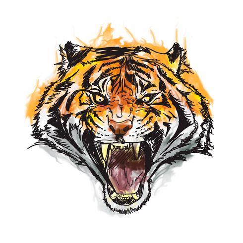 illustration vectorielle aquarelle génial tigre vecteur
