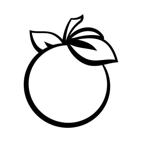 Illustration de fruits orange vecteur