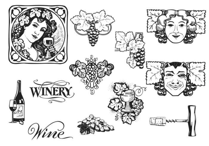 Ensemble vectoriel Vintage Grapes and Wine