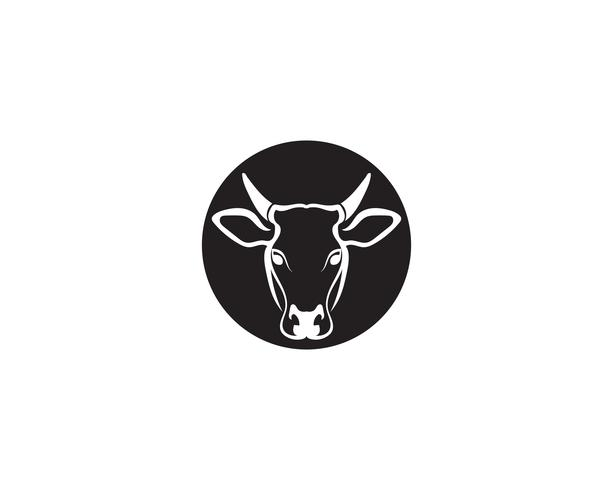 Modèle de tête logo vache vecteur