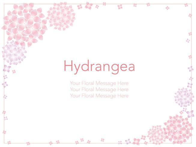 Illustration d'image vectorielle avec des hortensias. vecteur