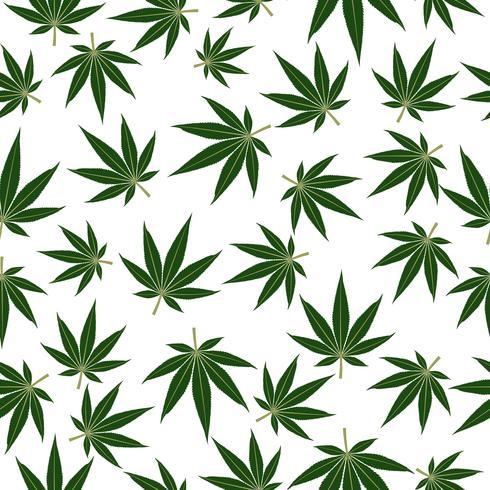 La marijuana ou le cannabis leafs de fond sans couture vecteur