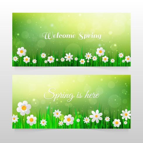 Bannières de printemps avec de l'herbe et des fleurs blanches vecteur