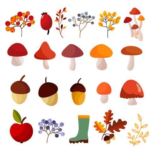 Collection d'éléments d'automne vecteur