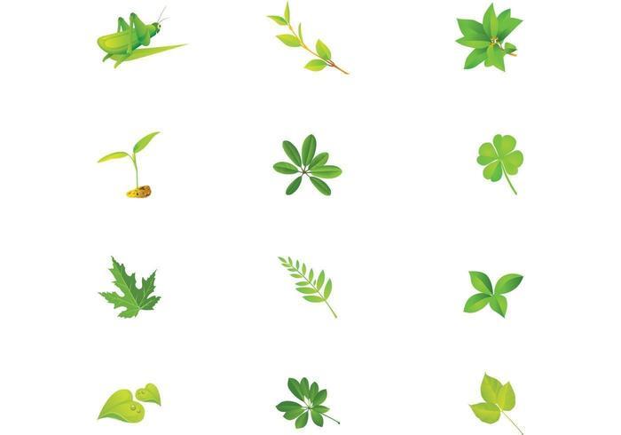 Pack vecteur feuilles vertes