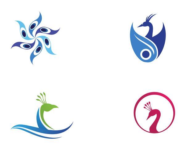 tête de paon logo et symboles template icon app vecteur