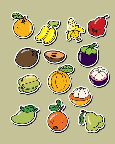 Ensemble de fruits de vecteur sur le fond blanc