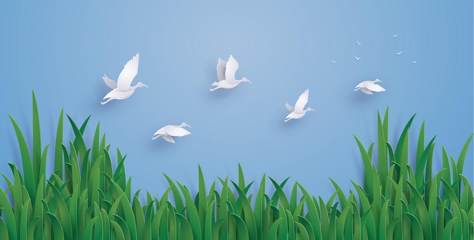 Les canards volent dans le ciel vecteur