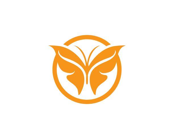 Conception d'icône de papillon de beauté vecteur