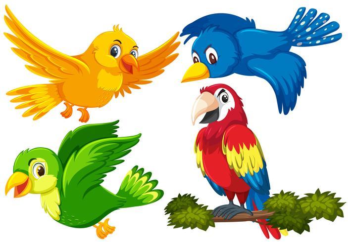 Ensemble de personnage d'oiseau vecteur