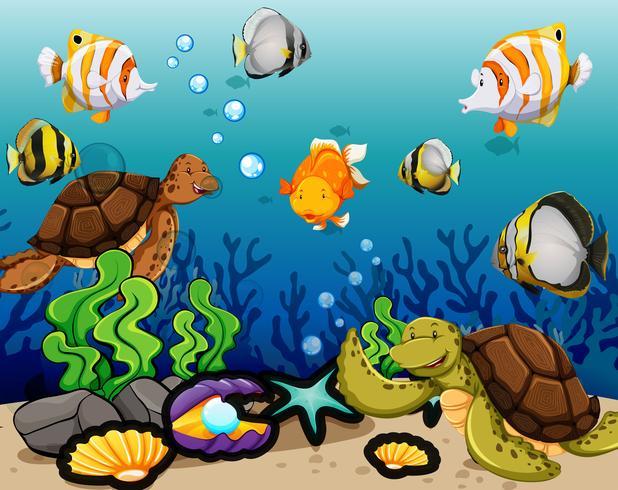 De nombreux animaux marins nageant sous l'eau vecteur