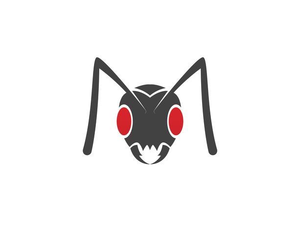 Illustration vectorielle de fourmi Logo template vecteur