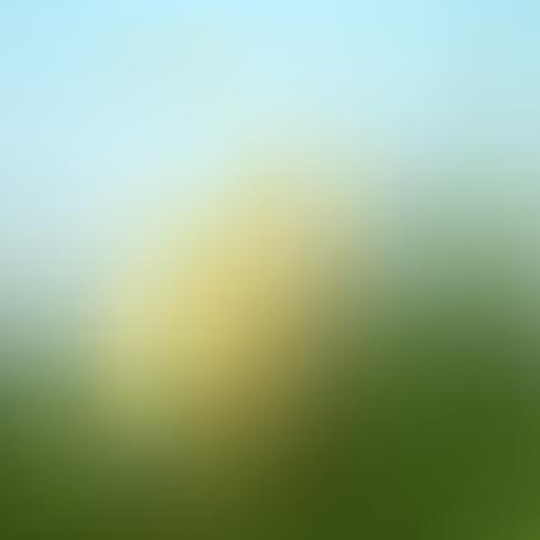 Abstrait vert flou dégradé avec la lumière du soleil. La nature vecteur