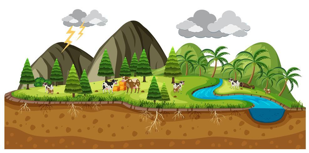 Scène d'un beau paysage avec des vaches vecteur