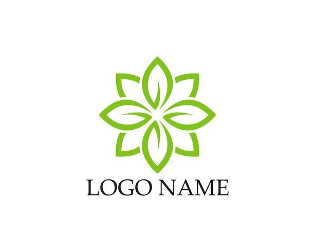 Logos d'icône de vecteur feuille verte écologie nature élément