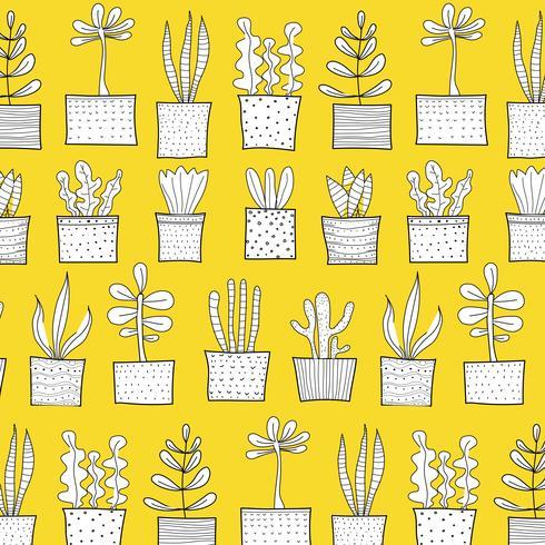 Modèle de cactus tropical dessiné à la main. Fond d'illustration vectorielle vecteur