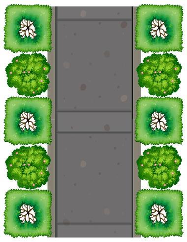 Vue aérienne de la route vecteur