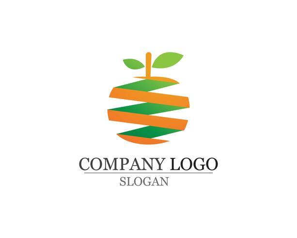 Modèle de logo et symboles vector illustration orange