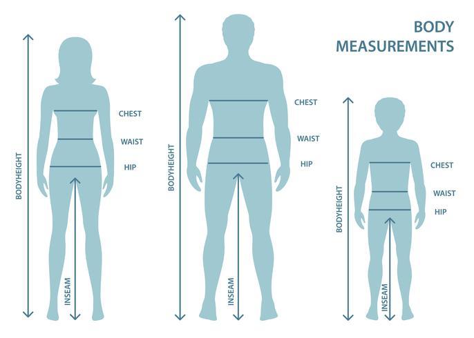 Silhouttes d'homme, femme et garçon en pleine longueur avec lignes de mesure des paramètres corporels. Mesures de tailles homme, femme et enfant. Dimensions et proportions du corps humain. vecteur