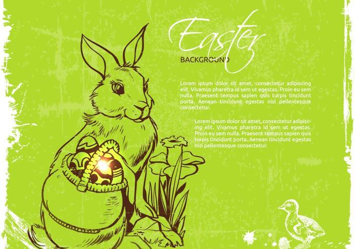 Fond de vecteur de lapin de Pâques