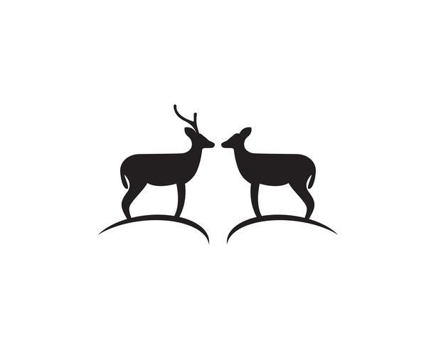 Vecteur de logo et symbole de cerf