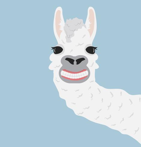 Lama heureux sourire illustration vectorielle vecteur