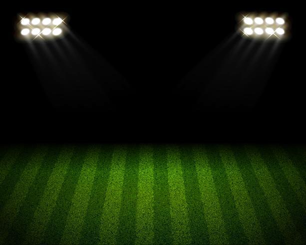 Terrain de soccer vecteur