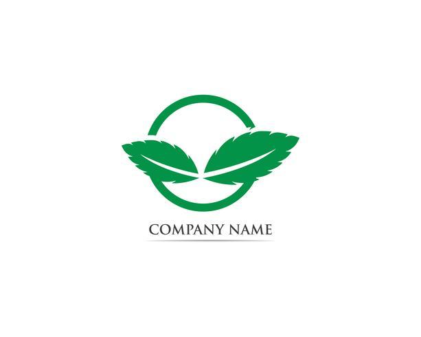 Menthe feuille logo et symbole vecteur