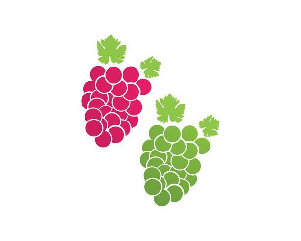 illustration vectorielle violet raisin et vert vecteur